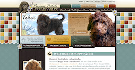 Puppy Patch Labradoodles
