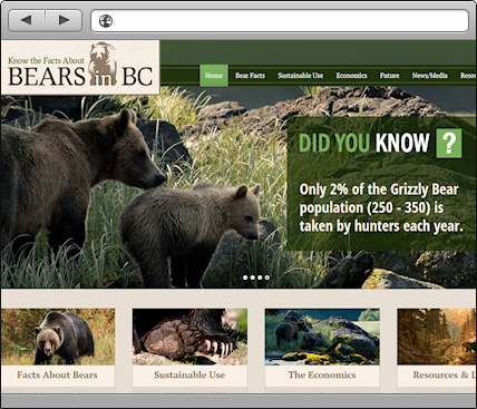 Bears in BC